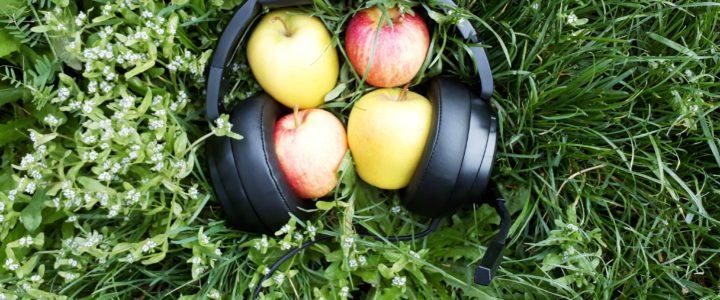 Fragen rund um den Apfel