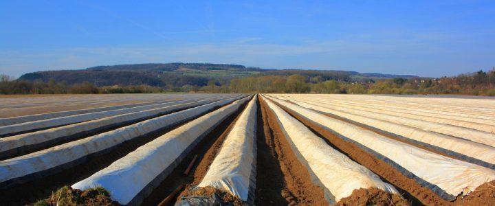 Plastikabdeckungen in der Landwirtschaft (weitere Überlegungen)